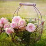 Saint-Valentin: un joli coffret olfactif pour offrir à une femme