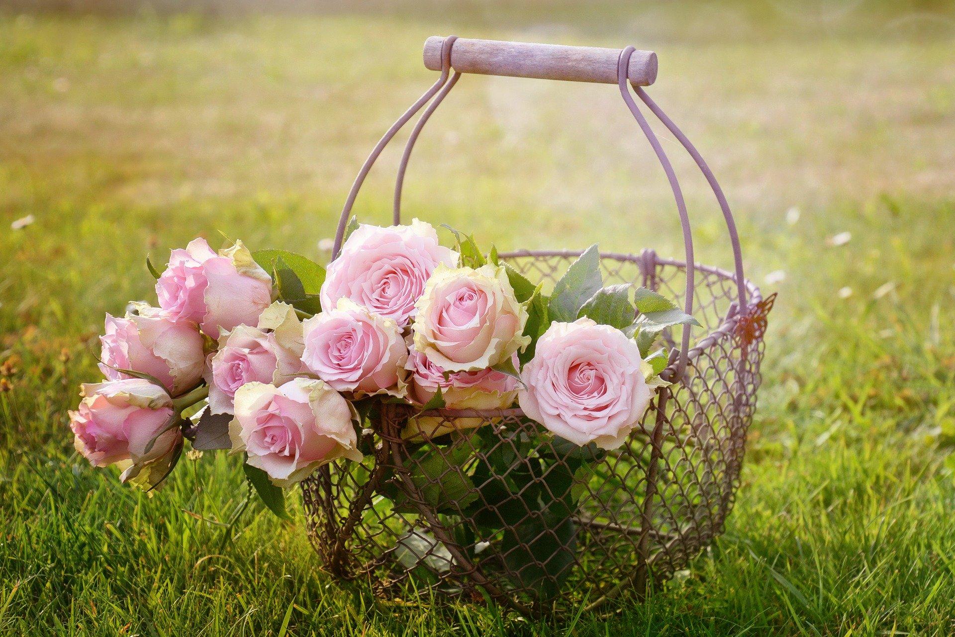 Fleurs cadeau saint valentin